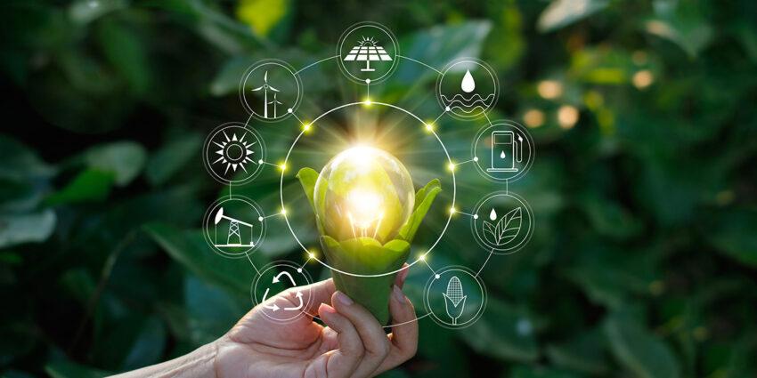 Rilanciare il Paese grazie a rinnovabili e sostenibilità: intervista ad Enrico Falk